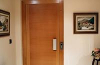 puerta de ascensor panelada